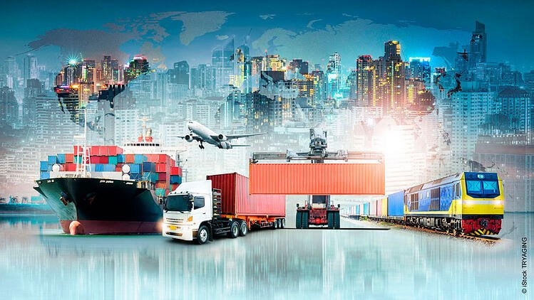 Haltermann Carless strengths in supply chain management