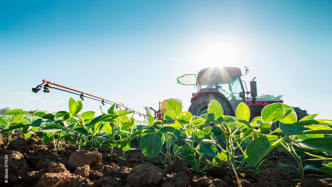 Criteria for the selection of aromatic solvents in the agricultural industry