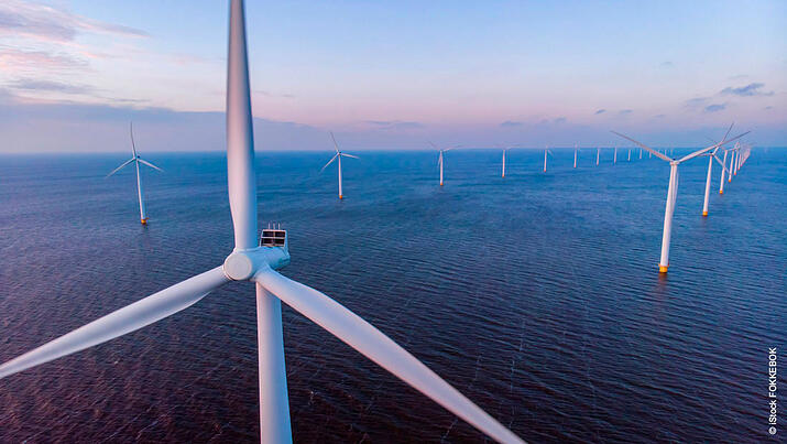 Sustainability: Haltermann Carless opts for renewable electricity