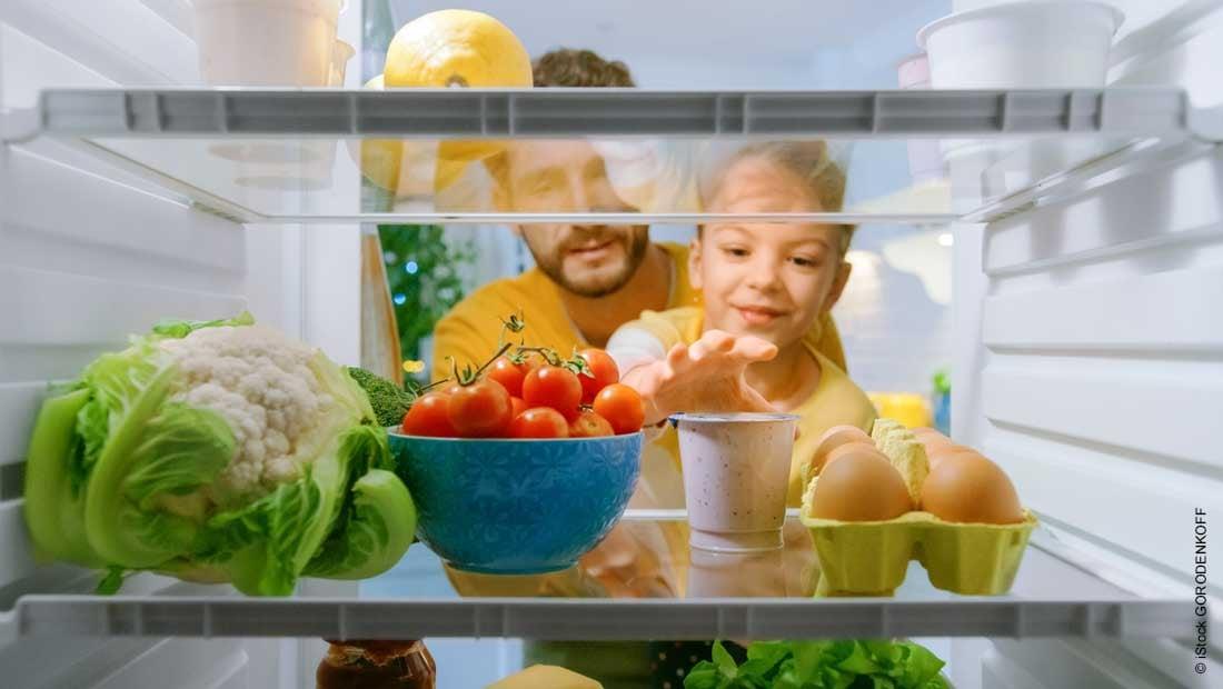 insulation of refrigerators