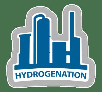 Logo_Hydrogenation2021_with shadow_RGB