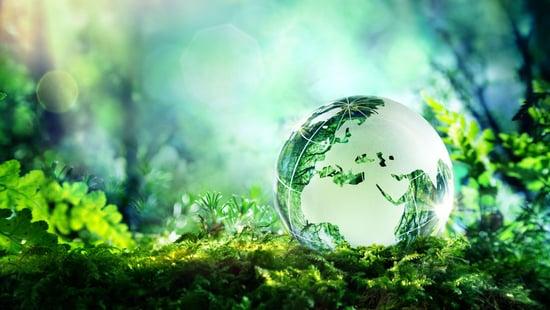 Eco Base Produkte