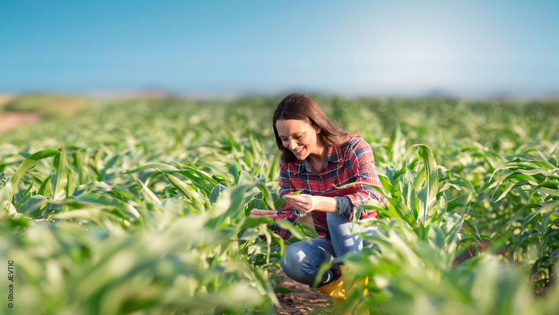 Nachhaltigkeit in der Landwirtschaft: Das sind die Vorteile von Caromax®