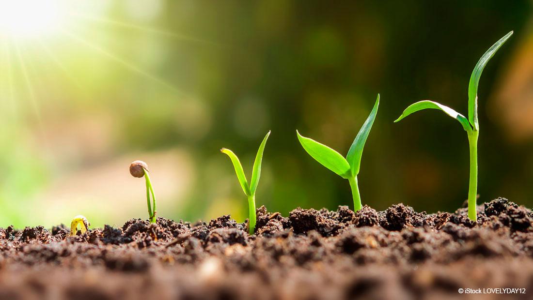 Nachhaltigkeitsgarantie in der Lieferkette durch das EcoVadis Rating