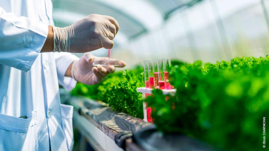 Qualität von schweren Aromaten sichern: Die Haltermann Carless Labore