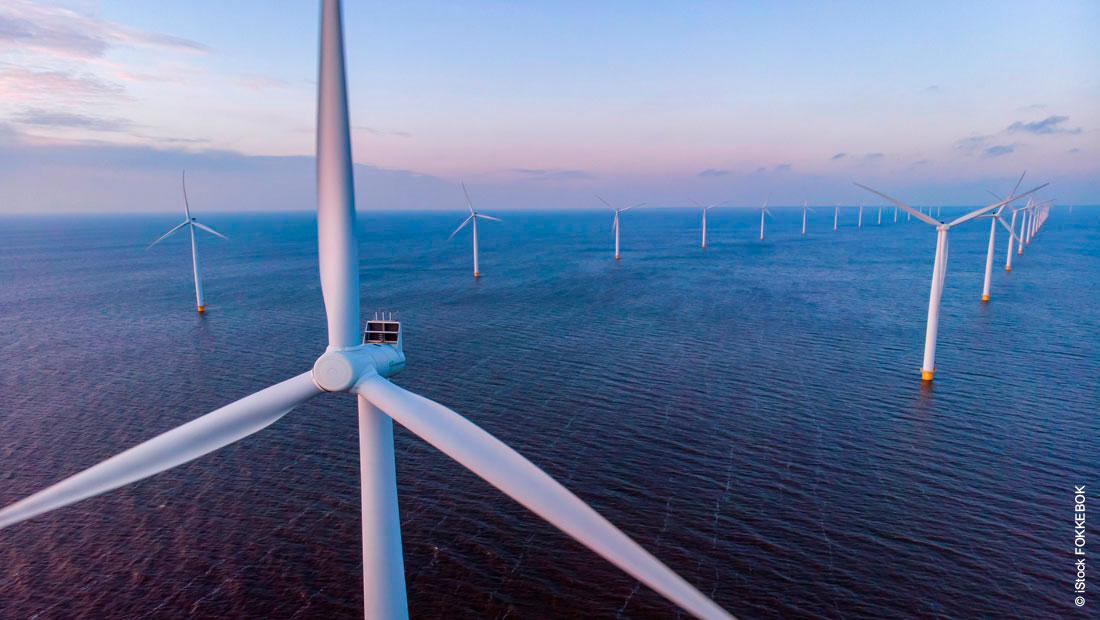 Nachhaltigkeit: Haltermann Carless setzt auf Strom aus erneuerbaren Energien
