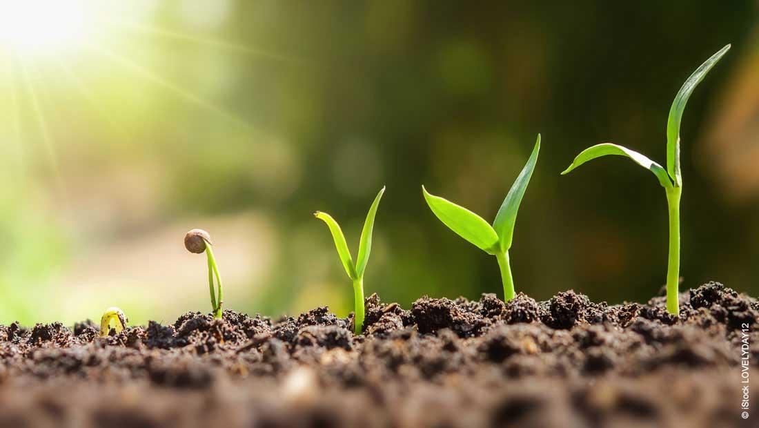 Haltermann Carless etabliert ein Team von Nachhaltigkeitsspezialisten